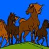 Jeu Coloriage de chevaux