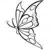 Jeu Coloriage Papillon