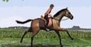 Jeu Horse Jumping