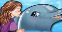 Jeu My Dolphin Show 5