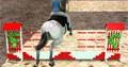 Jeu horse jumping 3d