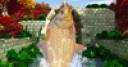 Jeu Jeu de pêche en rivière